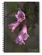 Artistic In Pink Spiral Notebook