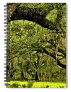 Artistic Live Oaks Spiral Notebook