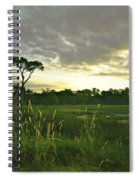 Artistic Lush Marsh Spiral Notebook