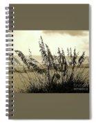 Artistic - Sea - Oats Spiral Notebook