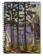 Artist's Camp, Canoe Lake, Algonquin Park Spiral Notebook