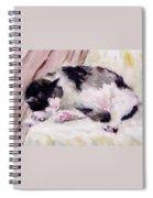 Artist's Cat Sleeping Spiral Notebook