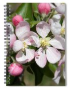 Apple Blossom Time Spiral Notebook