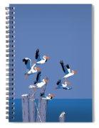 abstract Pelicans seascape tropical pop art nouveau 1980s florida birds large retro painting  Spiral Notebook