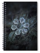 Icy Jewel Spiral Notebook