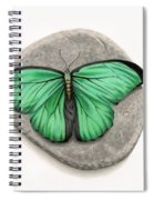 Mito Awareness Butterfly- A Symbol Of Hope Spiral Notebook