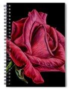 Red Rose On Black Spiral Notebook
