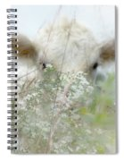 I See You - Sparkle Squares Spiral Notebook