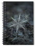 Stars In My Pocket Like Grains Of Sand Spiral Notebook