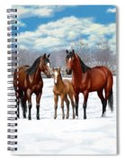 Bay Horses In Winter Pasture Spiral Notebook