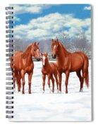 Chestnut Horses In Winter Pasture Spiral Notebook