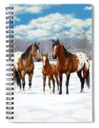 Bay Appaloosa Horses In Winter Pasture Spiral Notebook