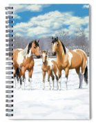Buckskin Paint Horses In Winter Pasture Spiral Notebook