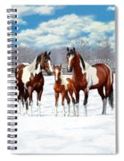 Bay Paint Horses In Winter Spiral Notebook
