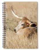 Prairie Longhorn Spiral Notebook
