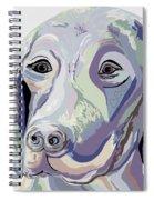 Weimaraner Denim Colors Spiral Notebook