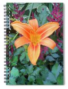 Image Included In Queen The Novel - Late Summer Blooming In Vermont 23of74 Enhanced Spiral Notebook