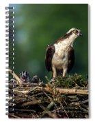 Osprey Family Night Spiral Notebook