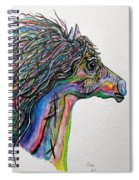 Racing The Wind ... A Story Painting Spiral Notebook