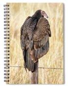 Portrait Of A Vulture Spiral Notebook