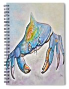 Color Me Blue . . . And Speckled Too Spiral Notebook