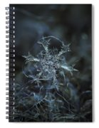 Snowflake Photo - Starlight Spiral Notebook