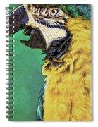 Aruba Yellow Spiral Notebook