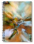 As Birds Fly Spiral Notebook