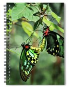 As One Spiral Notebook