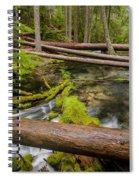 As The Creek Flows Spiral Notebook