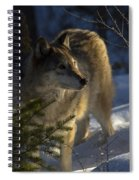 As The Woods Awakes Spiral Notebook