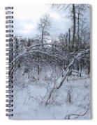 As Winter Returns Spiral Notebook