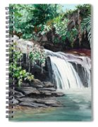 Asa Wright Falls      Sold Spiral Notebook