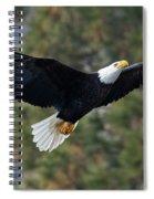 Ascent Spiral Notebook
