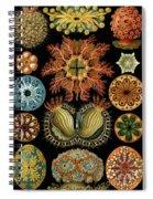Ascidiae Spiral Notebook