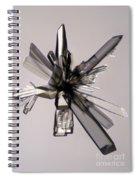 Ascorbic Acid Crystal Spiral Notebook