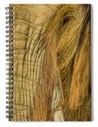 Asha Spiral Notebook