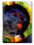 Ashes Spiral Notebook