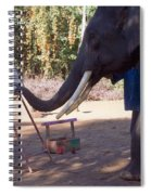 Asian Elephant Painting Picture Spiral Notebook