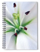 Asian Lilly I I Spiral Notebook