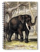 Asiatic Elephant With Young, 19th Spiral Notebook