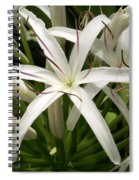 Asiatic Poison Lily Spiral Notebook