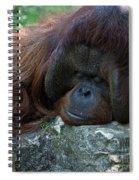 Asleep Spiral Notebook