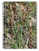 Asparagus In The Wild Spiral Notebook