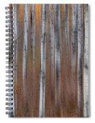 Aspen Abstract Vertical Spiral Notebook