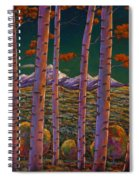 Aspen At Night Spiral Notebook