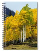 Aspen Fall 3 Spiral Notebook