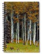 Aspen Fall Digital Spiral Notebook