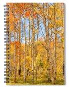 Aspen Fall Foliage Vertical Image Spiral Notebook