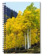 Aspen Fall Spiral Notebook